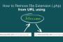 فایل robot.txt چیست و چه کاربردهایی دارد